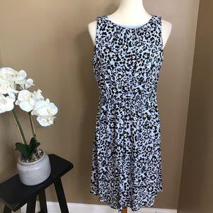 Loft Blue Knit Animal Print Sleeveless Dress LP